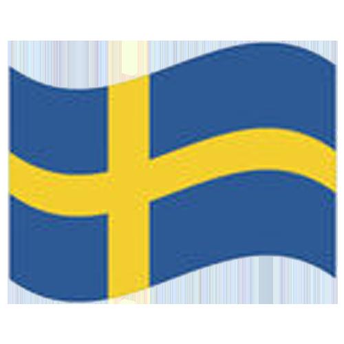 flag_sw