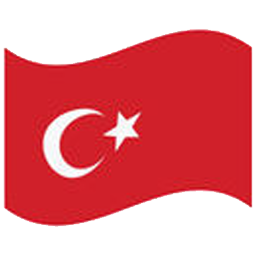 flag_tk